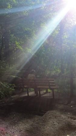 sign ron at bench
